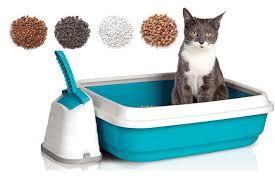 Выбираем наполнитель для кошки